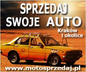 Moto300_250